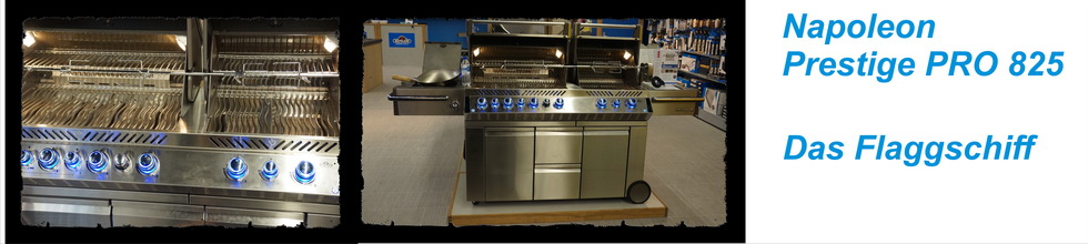 profagus grillis kaufen in f rth n rnberg grill fachgesch ft. Black Bedroom Furniture Sets. Home Design Ideas