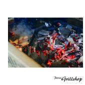 Holzkohle- Räuchereinsatz aus Gusseisen von Napoleongrill